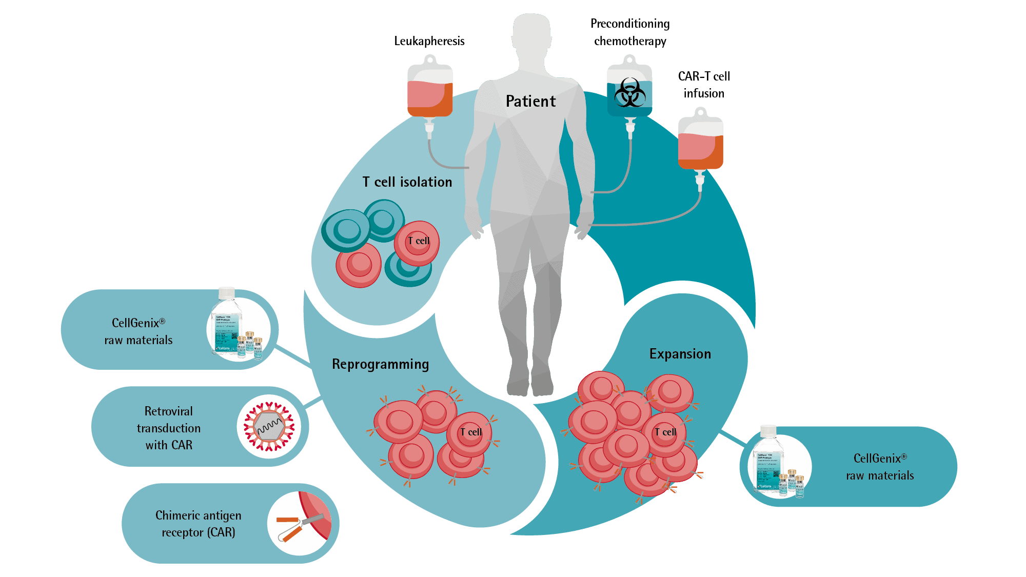 CAR T Cell Process